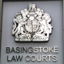 Basingstoke Court Crest