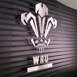 Stainless Steel WRU logo