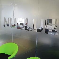NUBLUE logo frost