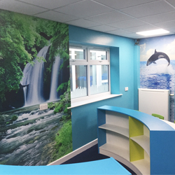 Dolphin and Waterfall School Wall Mural
