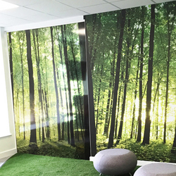 Transparent forest print on glass partition