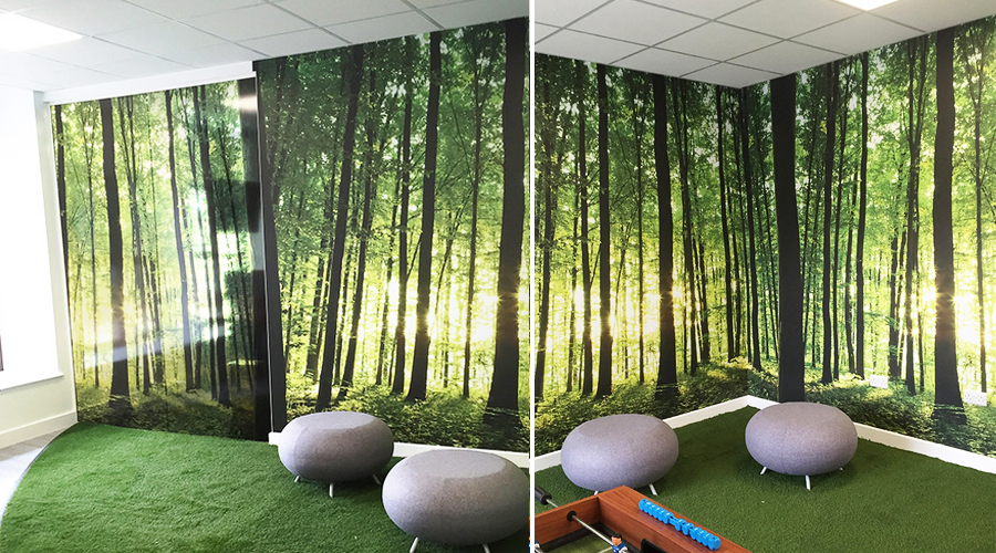 Forest Wall Mural and glass prints